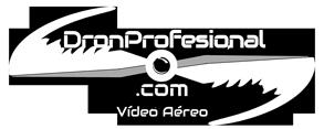 Dronprofesional